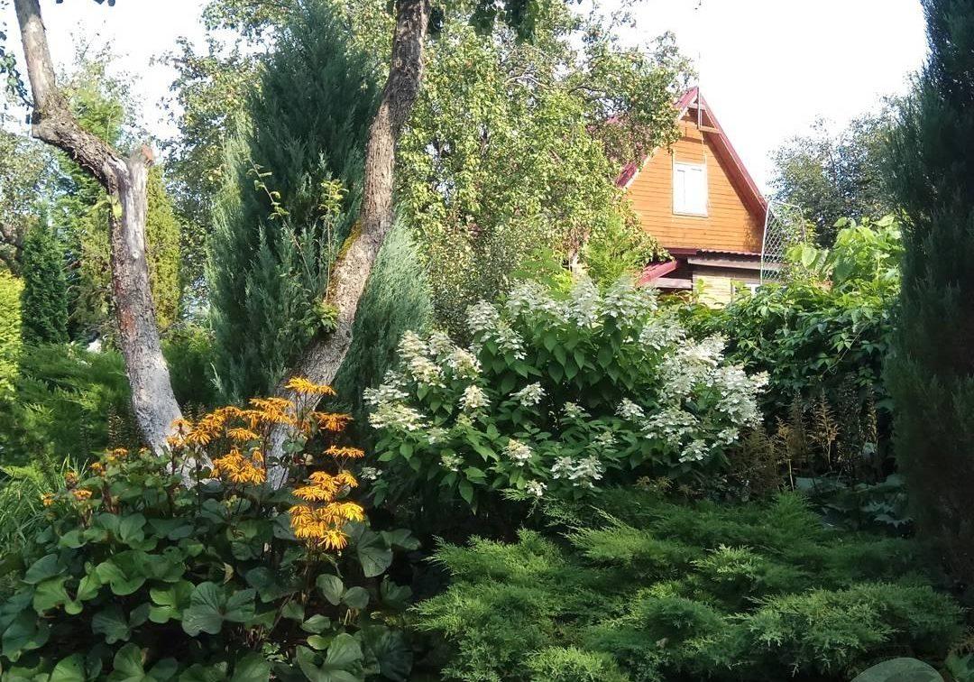 Уход за садом в Домодедово