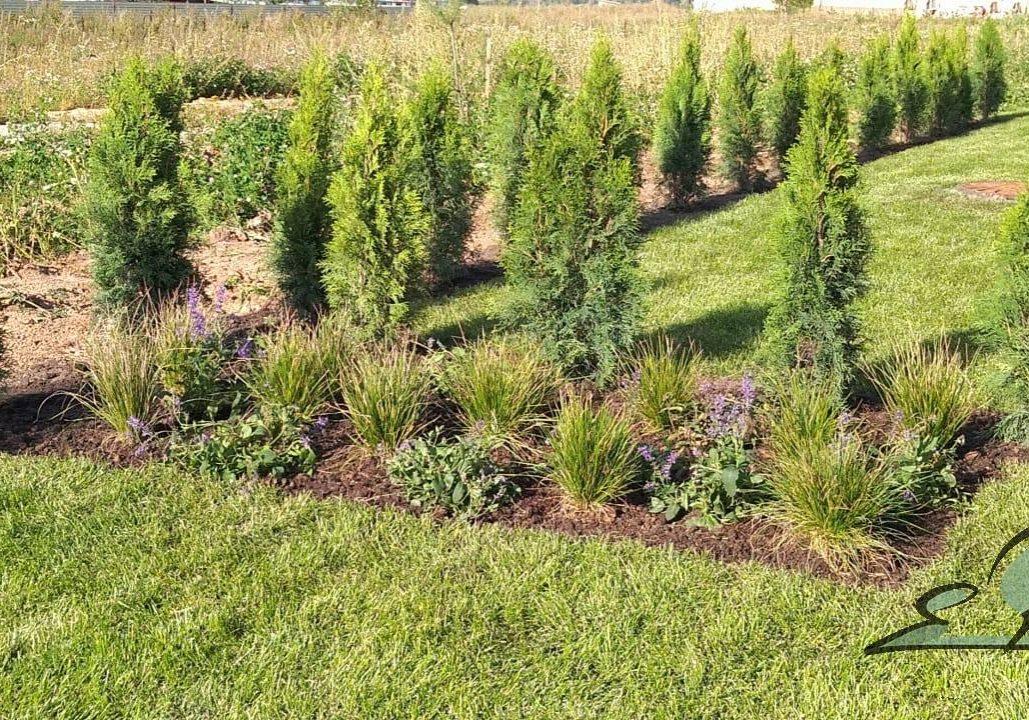 Сад для таунхауса